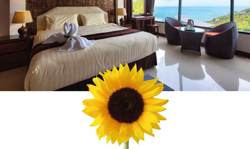 Sunrise Villa Sunflower